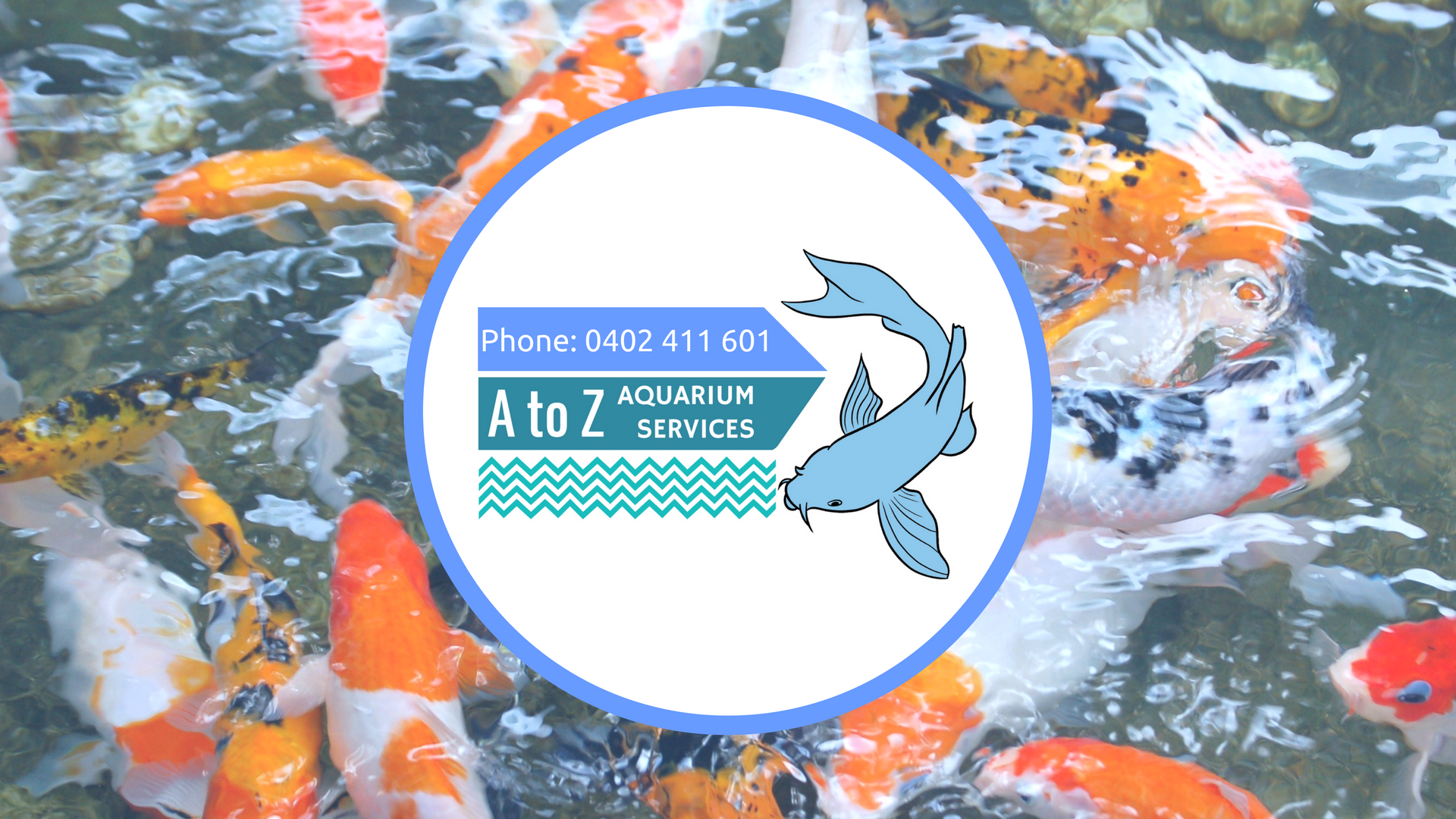A to Z Aquarium Services